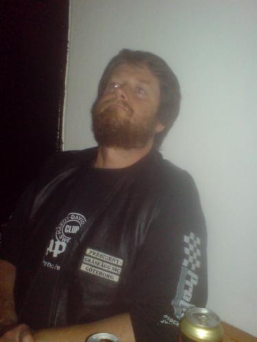 2009 Hönet